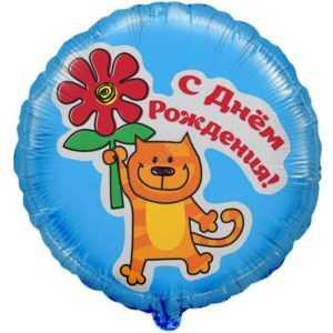 Круг, С Днем рождения (кот с цветком), 46см
